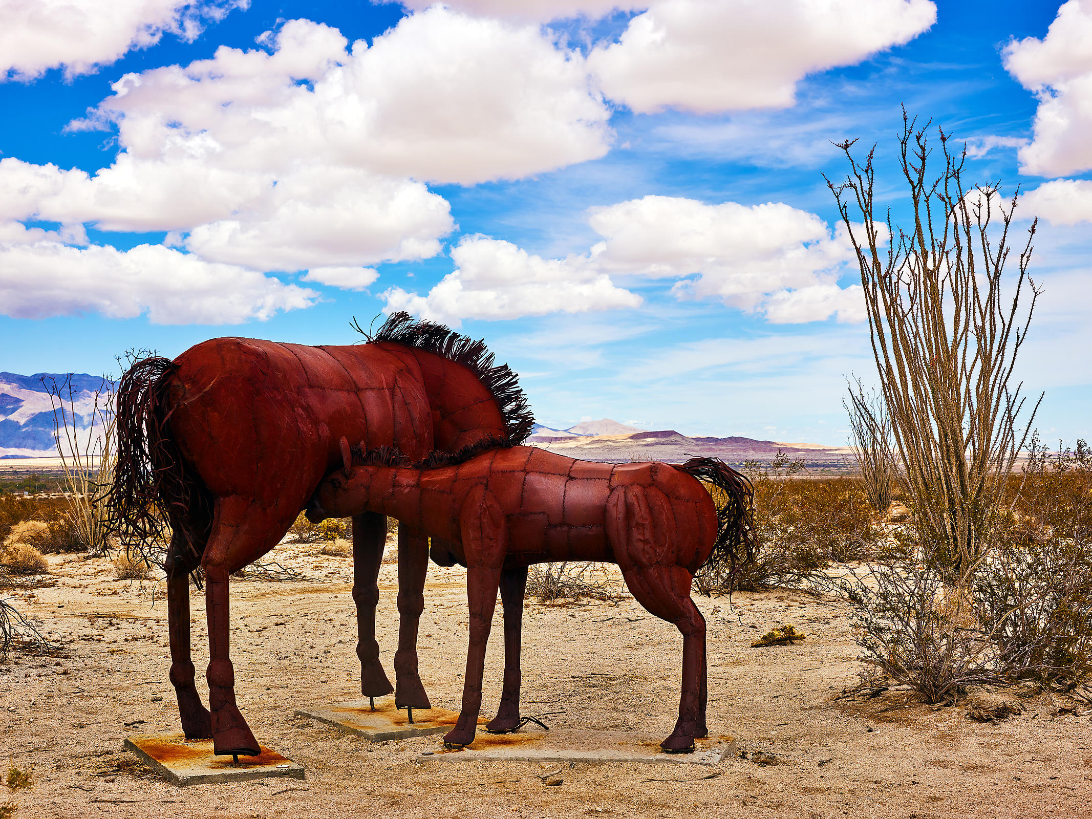 Extinct Horse and Foal