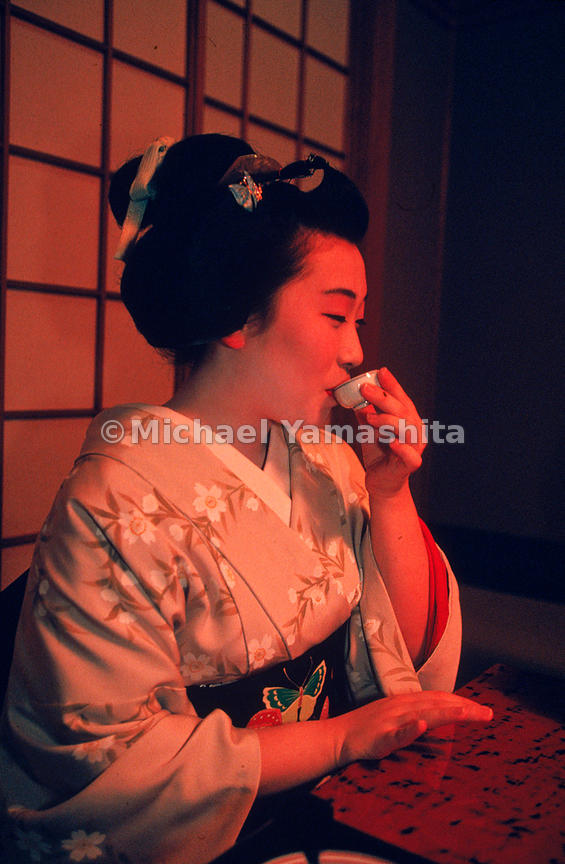 Geisha are true artists; some indeed are National Living treasures. Dedication and perseverance are mandatory for the geisha ...