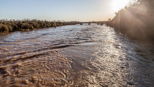 Looking towards Sunrise Boulevard from the Fair Oaks red footbridge with American River in flood
