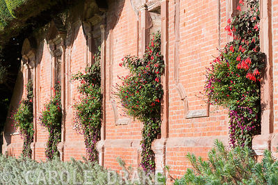 Lushly planted containers set into niches in the castle wall include fuchsia, lobelia, salvias and trailing Rhodochiton atros...