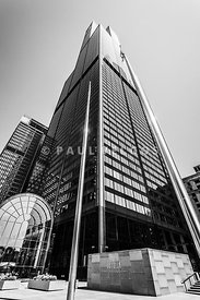Sears Willis Tower Chicago Black and White Picture