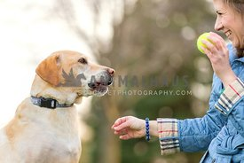 woman owner holding tennis ball while dog licks lips