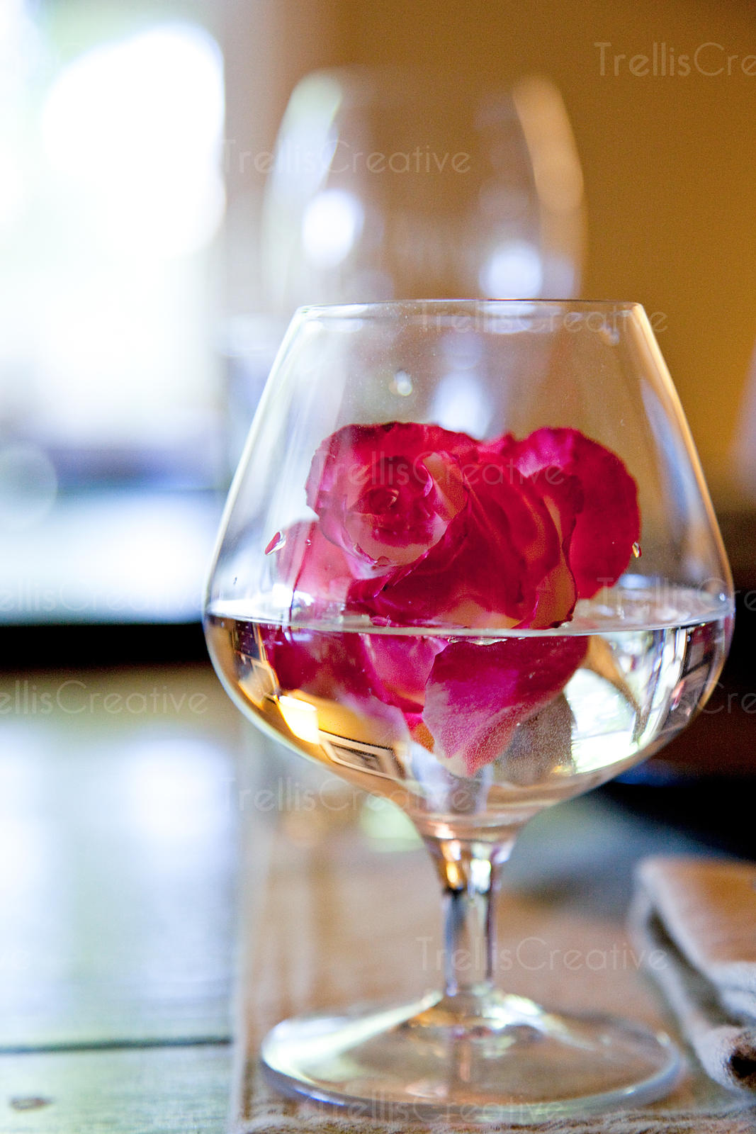 Rose in Glass on Table