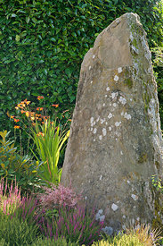 Standing stone acts as focal point on raised bed; heathers, Crocosmia