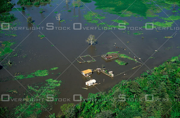 Flooded Houses in Rainy Season Amazon River Brazil