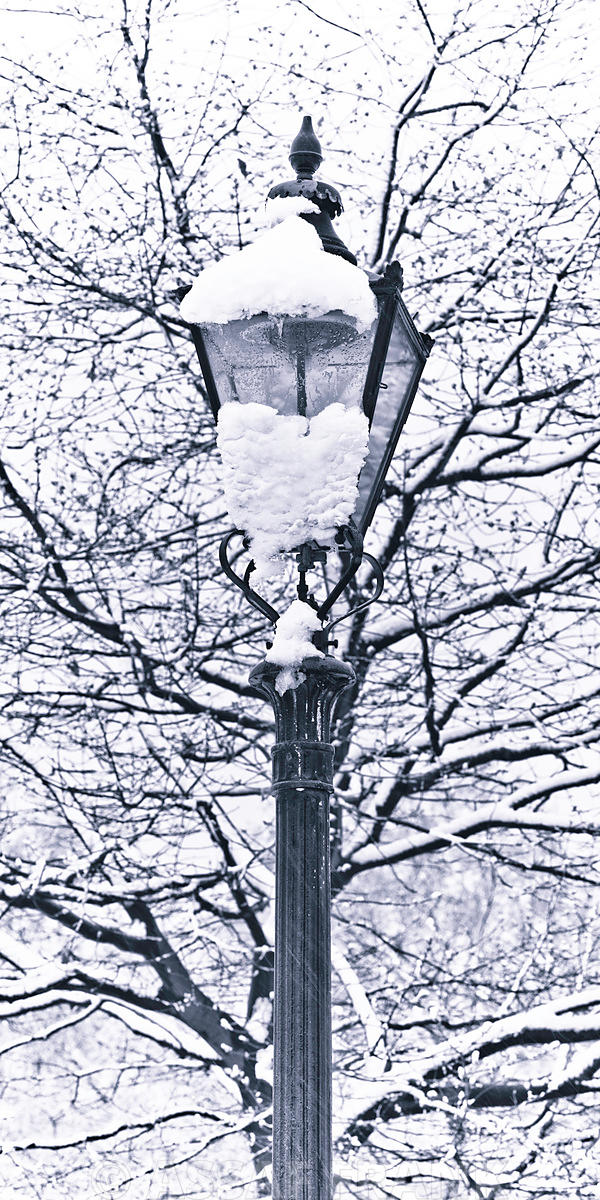 Lamp Covered with Snow at Hyde Park