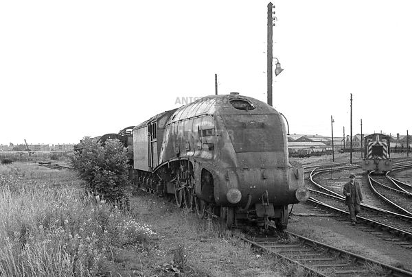 (A4) 60010  Darlington