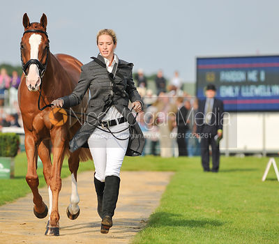 Emily Llewellyn and Pardon Me II - 2nd Inspection - Burghley 2010