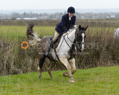 Doone Chatfeild-Roberts jumping a hedge at Sheepwash - The Belvoir at Mount Pleasant