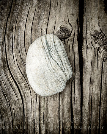 Nature's Worn Gems #3b :: Limited Edition Fine Art Print