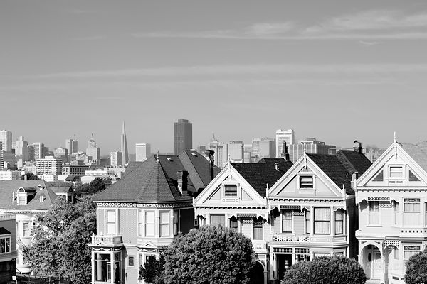 PAINTED LADIES ALAMO SQUARE SAN FRANCISCO HISTORIC ARCHITECTURE  BLACK AND WHITE