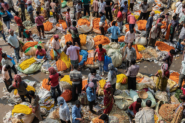 Flower Vendors and Porters at the Mullick Ghat Flower Market