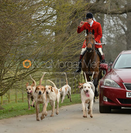 The South Shropshire hounds at Belvoir Castle 11/3/17