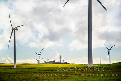 West Coast One Wind Energy Facility