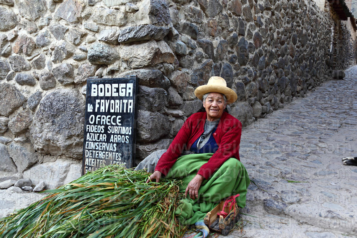 Old Quechua lady selling forage for animals, Ollantaytambo, Sacred Valley, Peru