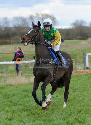 Lara Mahon (AWESOME GEORGE) - Ladies Open - Cottesmore Point-To-Point, Garthorpe, 28/2