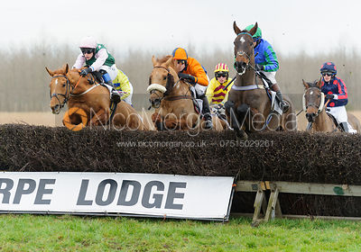 Race 5 (i) - Restricted - Midlands Area Club Point-to-point 2017, Thorpe Lodge 29/1