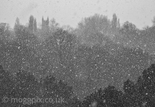 Spires, Trees and Snow