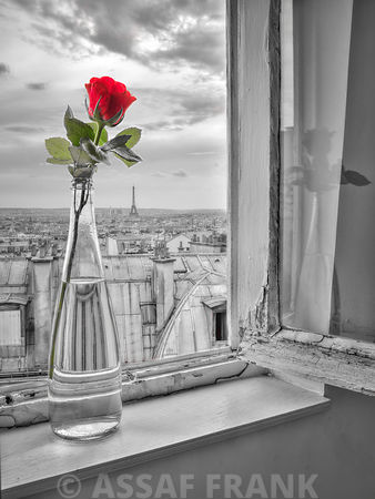Flower vase on window with Eiffle tower in background, Paris