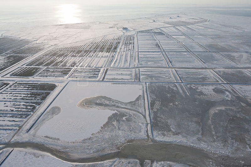 Aerial view of Hallig Island Nordstrandischmoor, in winter with snow and ice on the Wadden Sea, Schleswig-Holstein National P...