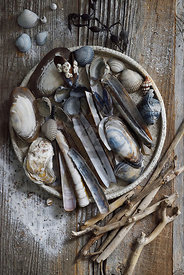 Beach findings and clay