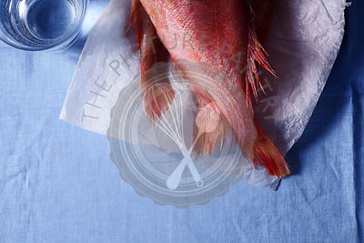 Raw uncooked fish perch