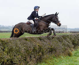 Marianne Knipe jumping a hedge on Greenall's
