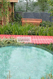 Contemporary garden, Pool, Red, Wooden footbridge, Digital