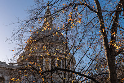 Autumn leaves at St Paul's Cathedral London