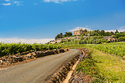 Montmelas castle and vineyard