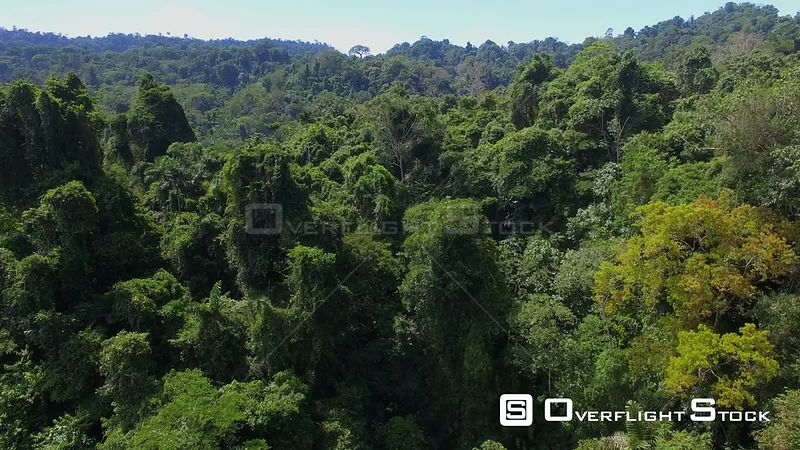 Jungles of Gandoca Manzanillo National Wildlife Refuge Costa Rica Drone Video