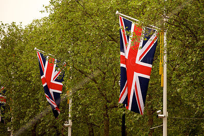 Union Jack Flags in The Mall Leading to Buckingham Palace