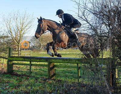 Charlie Smith jumping a hunt jump away from the meet - The Cottesmore Hunt at Pickwell Manor 28/12
