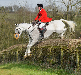 Tom Kingston MFH jumping a hedge