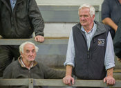 2nd September, 2014. Carnaross Mart, County Meath. Pictured is from left: Pat Fitzharris and Michael Cullen from Stamullen.Ph...