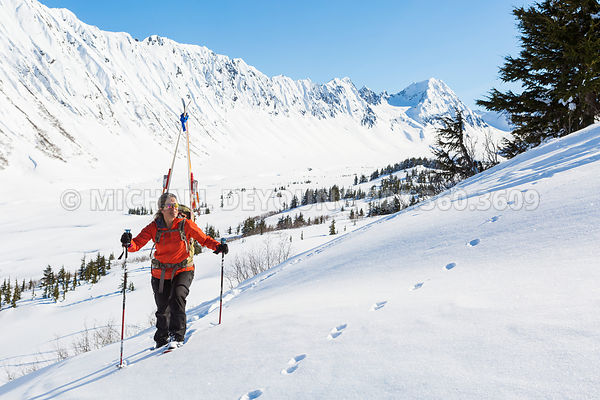 Alaska Backcountry Skiing