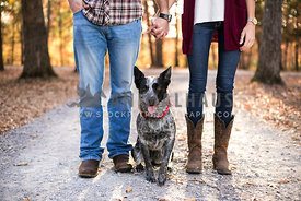 Happy Cattledog in between his owners