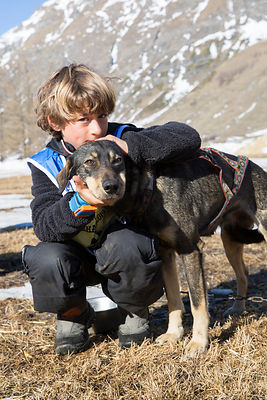 Eliott, 8 ans posant avec un de ses chiens de traineau, Bessans, France / Eliott, 8 years old posing with one of his sled dog...