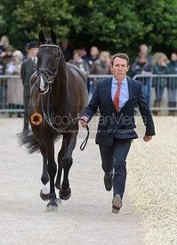 Austin O'Connor and RINGWOOD MISSISSIPPI - First Horse Inspection, Mitsubishi Motors Badminton Horse Trials 2014