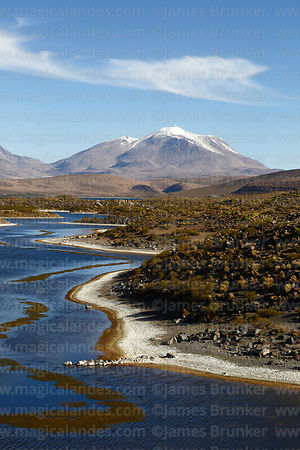 Lake Chungará and Guallatiri volcano, Lauca National Park, Region XV, Chile