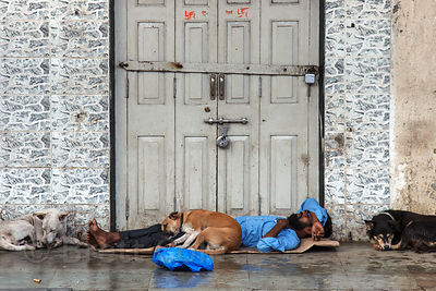 A man and a stray dog sleep on a sidewalk in the Dharavi slum, Mumbai, India.