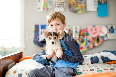 Young boy holding corgi puppy