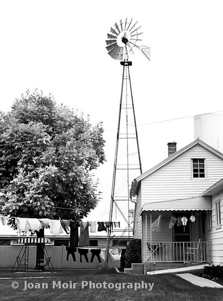 amish_backyard-2_original2562_2