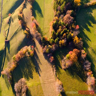 Aerial drone view of woods in autumn, Dolomites, Italy