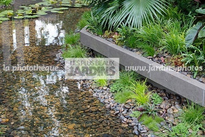 Exotic garden, Pebble, Tropical garden, Water garden,