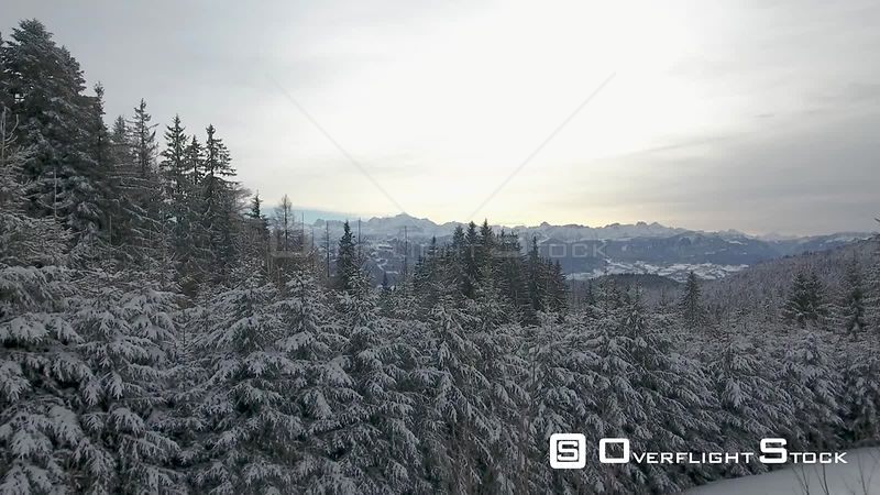 Alpine winter forests and mountains from Les Voirons, CranvesSales, France.