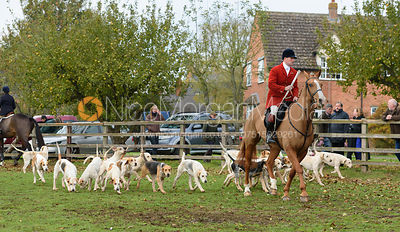 hounds leaving the meet - The Cottesmore Hunt at Braunston 8/11