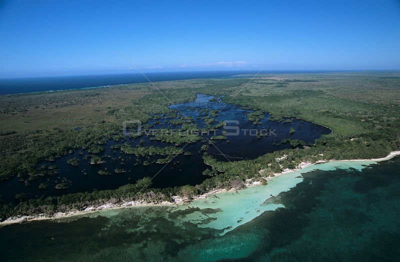Aerial view of mangrove swamp, Isla de Utila, Bay Islands, Caribbean coast, Honduras 2006