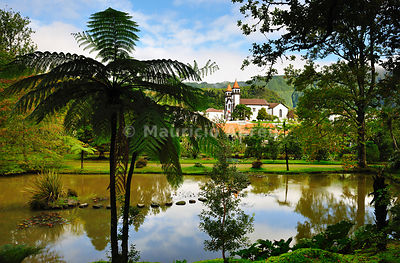 Founded in the 18th century, the Terra Nostra garden at Furnas is one of the most beautiful and exotic  gardens in the world....