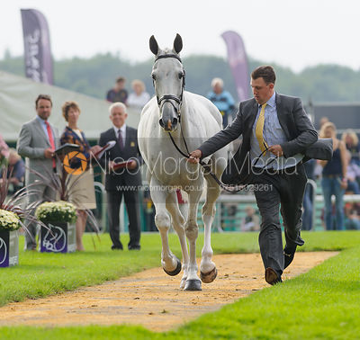 Matthew Wright and COSSAN LAD - The first vets inspection (trot up),  Land Rover Burghley Horse Trials, 3rd September 2014.